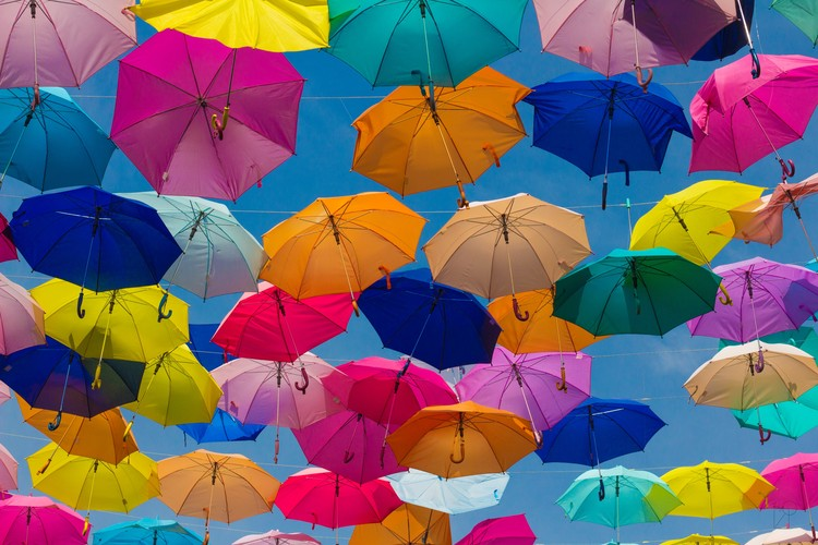 Ganyo Insurance Agency - personal Umbrella liability policy for Arizona